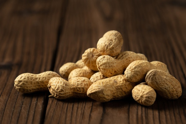 Peanut suppliers in India
