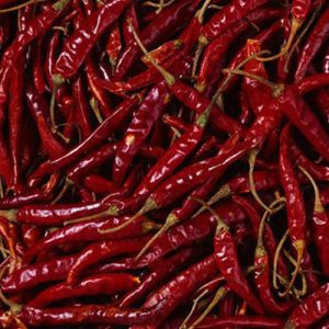 indian-red-chilli
